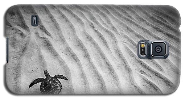 Turtle Ridge Galaxy S5 Case by Sean Davey