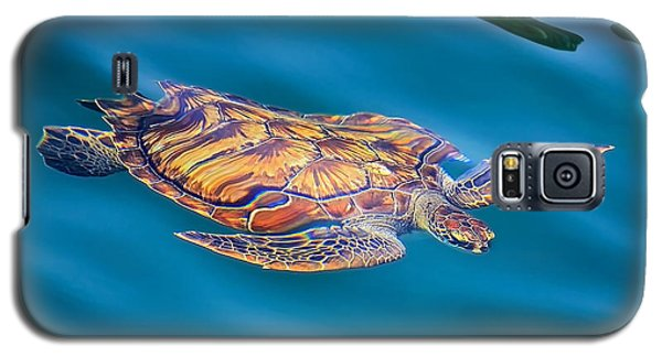 Turtle Up Galaxy S5 Case