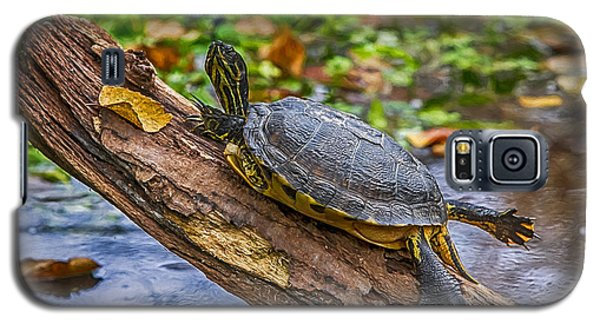 Turtle Yoga Galaxy S5 Case