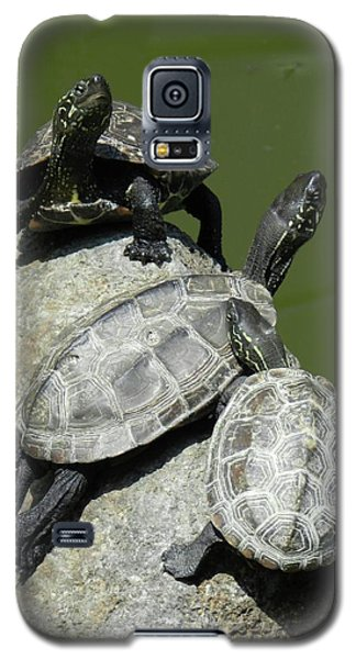 Galaxy S5 Case featuring the photograph Turtles At A Temple In Narita, Japan by Breck Bartholomew