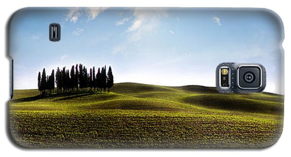 Tuscan Cypress Tree Galaxy S5 Case