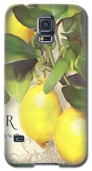Tuscan Lemon Tree - Citronier Citrus Limonum Vintage Style Galaxy S5 Case