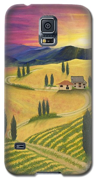 Tuscan Sunset B Galaxy S5 Case