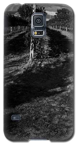 Tuscan Vineyard Galaxy S5 Case