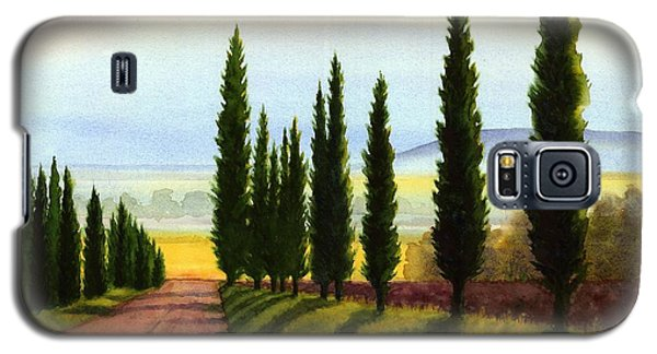 Tuscany Cypress Trees Galaxy S5 Case by Janet King