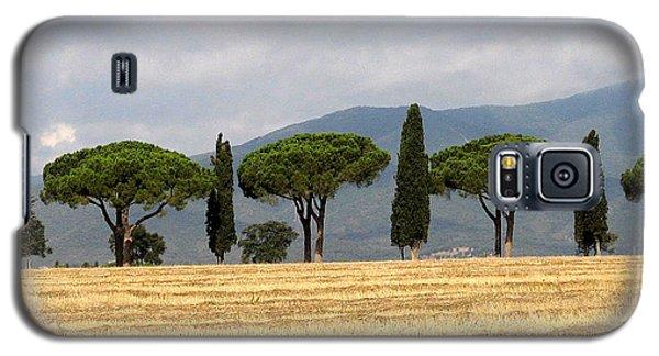Tuscany Trees Galaxy S5 Case
