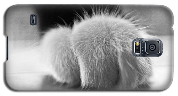 Tuxedo Cat Paw Black And White Galaxy S5 Case