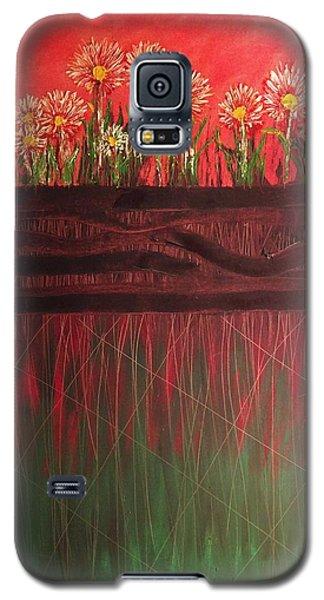 Twelve Daises In Window Box Galaxy S5 Case