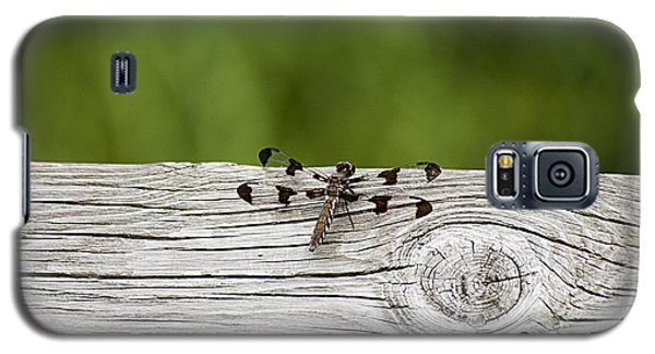 Galaxy S5 Case featuring the photograph Twelve Spotted-skimmer 20120703_213a by Tina Hopkins