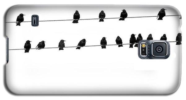 Twenty Blackbirds Galaxy S5 Case by Angie Rea
