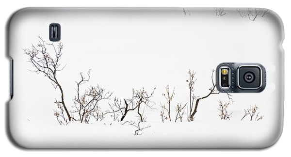 Twigs In Snow Galaxy S5 Case