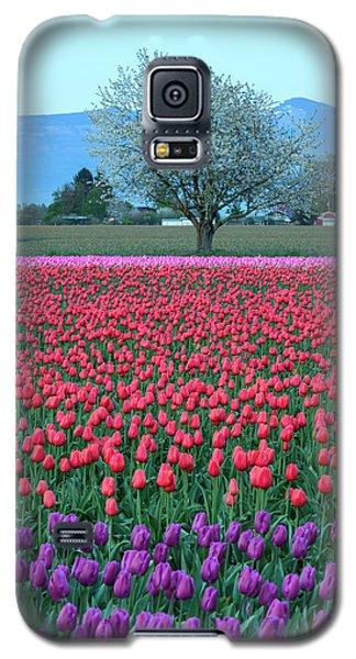 Twilight In Skagit Valley Galaxy S5 Case