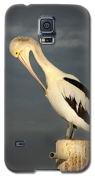 Twilight Galaxy S5 Case by Marion Cullen