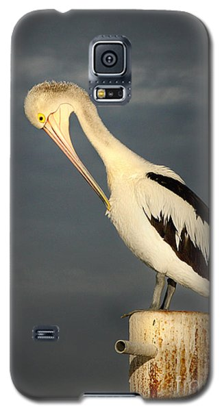 Galaxy S5 Case featuring the photograph Twilight by Marion Cullen