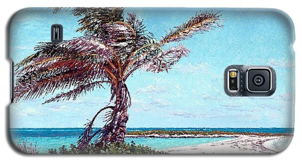 Twin Cove Palm Galaxy S5 Case