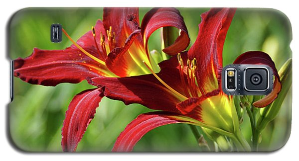 Galaxy S5 Case featuring the photograph Twin Daylilies by Sandy Keeton