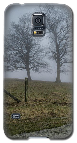Twin Trees Late Fall Foggy Morning Galaxy S5 Case