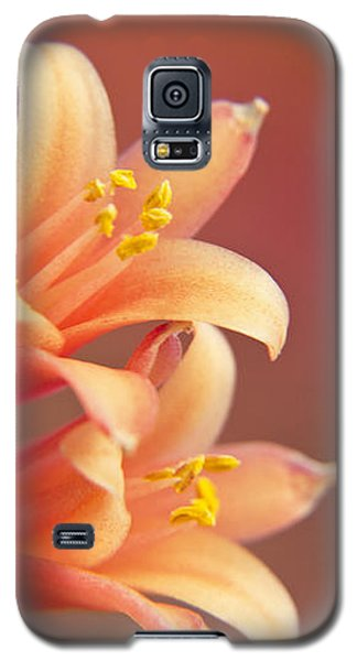 Twin Yucca Flowers Galaxy S5 Case