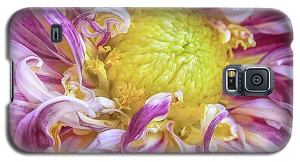 Twisted Petals Galaxy S5 Case