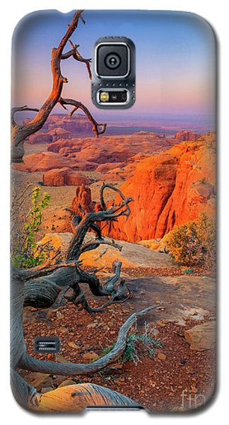 Twisted Remnant Galaxy S5 Case