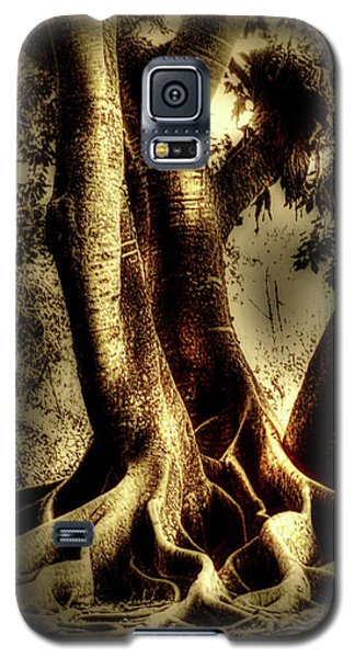 Galaxy S5 Case featuring the photograph Twisted Trees by Tom Prendergast