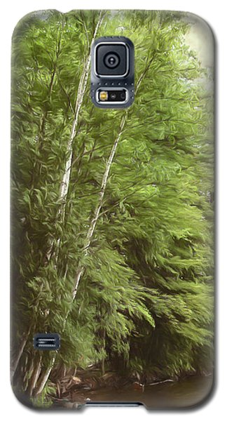 Two Birches Galaxy S5 Case
