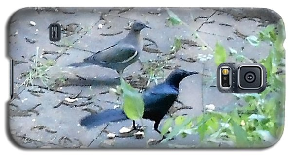 Galaxy S5 Case featuring the photograph Two Birds by Felipe Adan Lerma