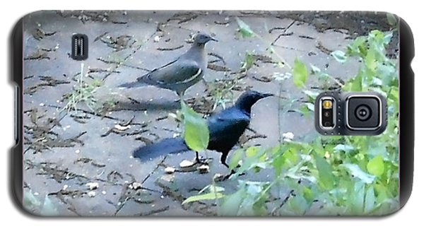Galaxy S5 Case featuring the photograph Two Birds Pink by Felipe Adan Lerma