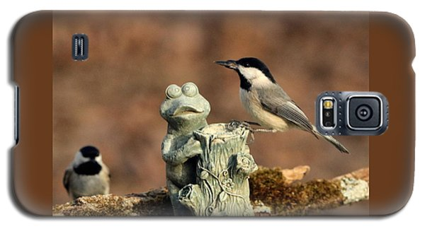 Two Black-capped Chickadees And Frog Galaxy S5 Case