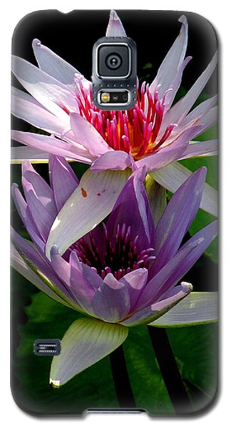 Galaxy S5 Case featuring the photograph Two By Two by Rosalie Scanlon