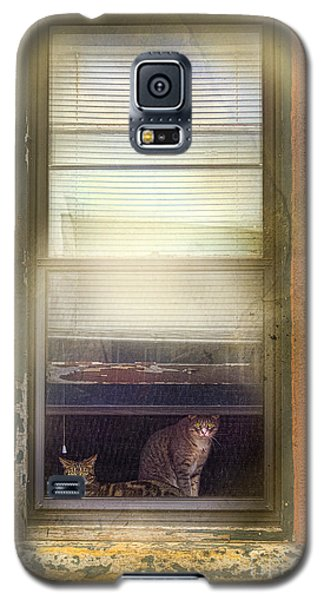 Two Cats Of Elm Galaxy S5 Case