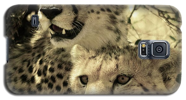 Two Cheetahs Galaxy S5 Case