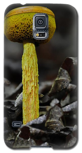 Two Colored Bolete Galaxy S5 Case
