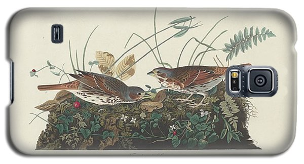 Two-colored Sparrow Galaxy S5 Case by Dreyer Wildlife Print Collections