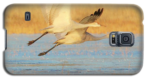 Two Cranes Cruising Galaxy S5 Case