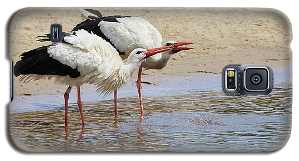 Two Drinking White Storks Galaxy S5 Case