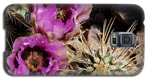 Galaxy S5 Case featuring the photograph Two Fucshia Blossoms  by Phyllis Denton
