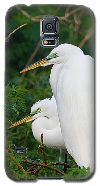 Two Great Egrets Galaxy S5 Case
