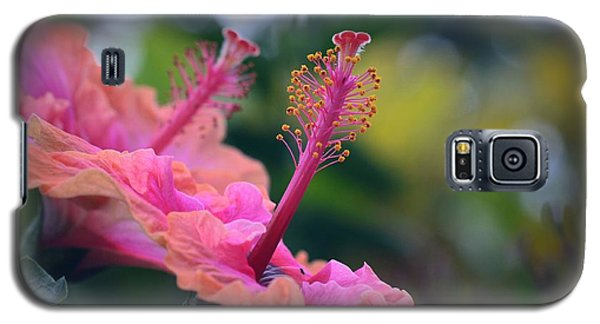 Two Hibiscus Galaxy S5 Case