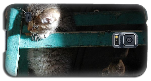 Galaxy S5 Case featuring the photograph Two Kittens With Turquoise Chair by Doris Potter