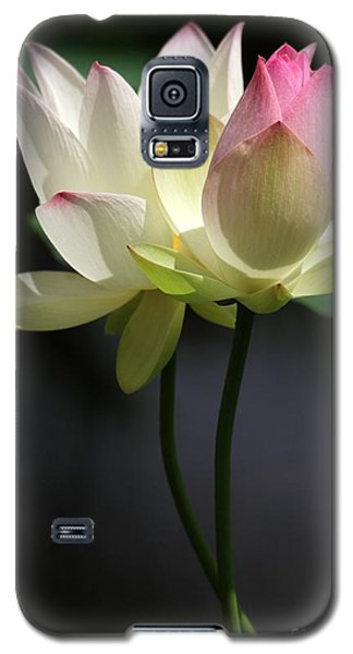 Two Lotus Flowers Galaxy S5 Case