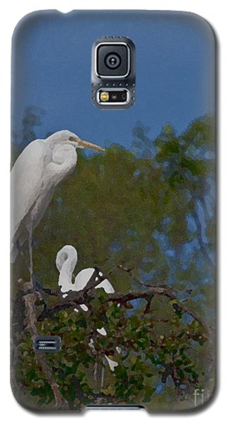 Galaxy S5 Case featuring the photograph Two On A Perch by Ken Frischkorn
