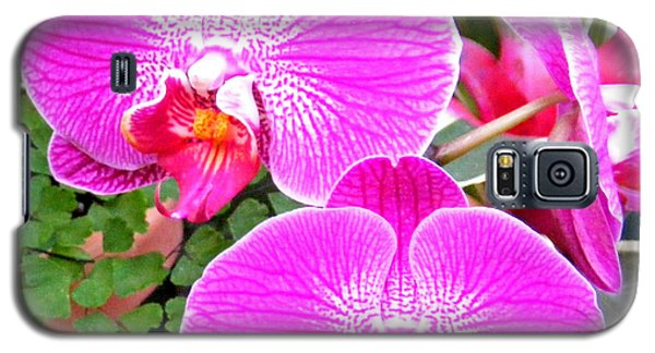 Two Orchids Galaxy S5 Case