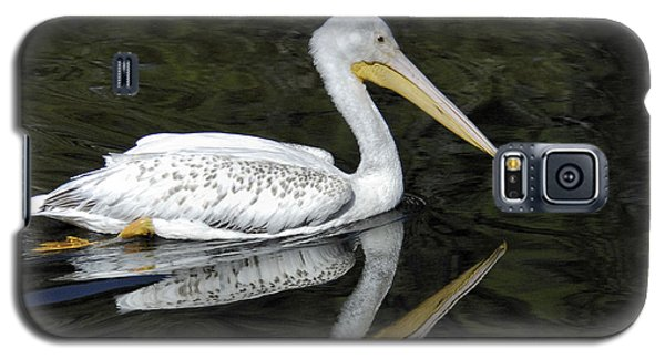 Two Pelicans Galaxy S5 Case