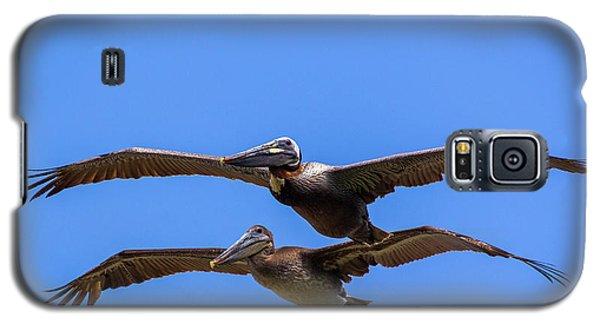 Two Pelicans Over The Beach Galaxy S5 Case
