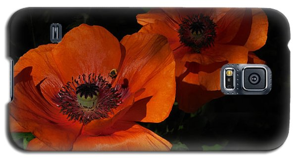 Two Poppies  And A Bee Galaxy S5 Case