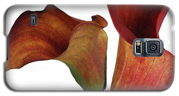 Two Rust Calla Lilies Square Galaxy S5 Case by Heather Kirk