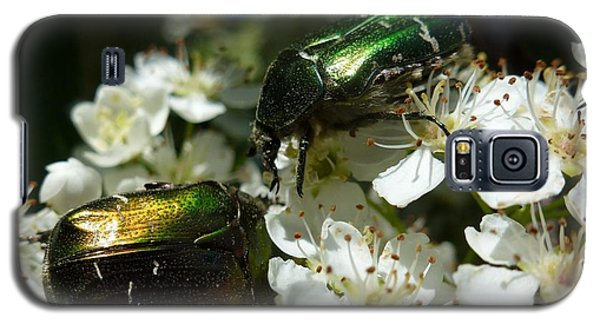 Galaxy S5 Case featuring the photograph Two Scarabs Metallic Green by Jean Bernard Roussilhe