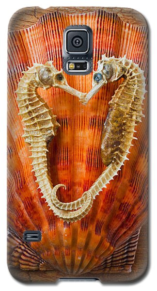 Seahorse Galaxy S5 Case - Two Seahorses On Seashell by Garry Gay