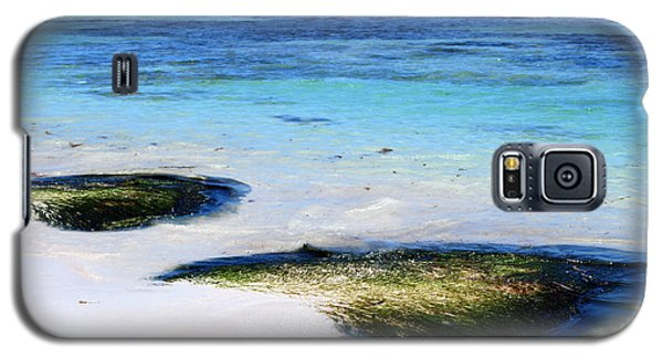 Two Seaweed Mounds On Punta Cana Resort Beach Galaxy S5 Case by Heather Kirk